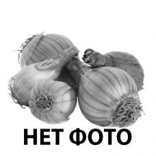 Луковицы нарцисса Heamoor (Хемур)
