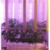 Светодиодные светильники для огорода на подоконнике